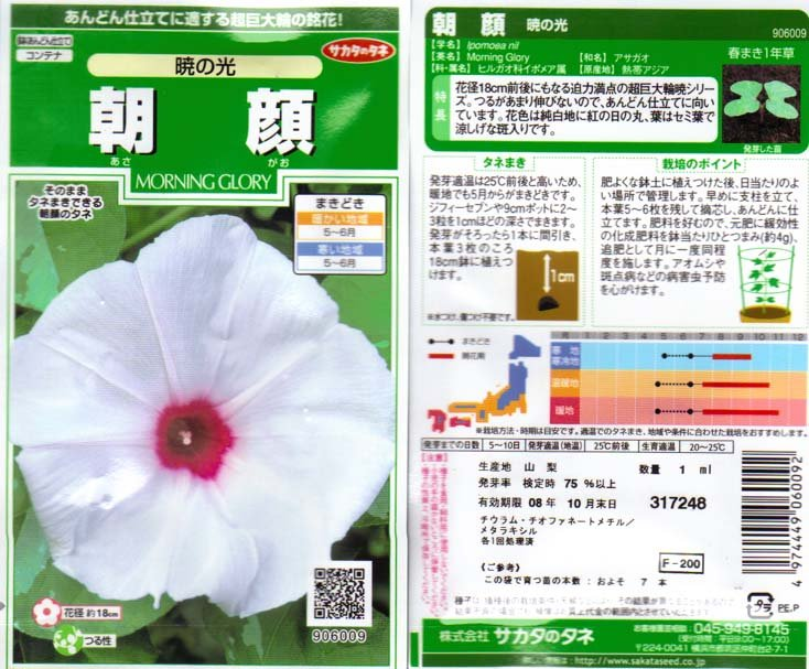 Image 1 of Akatsuki no Hikari, The Light at Dawn, Ipomoea Nil, Japanese Morning Glory seeds