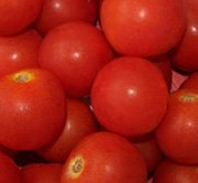 Tommy Toe Tomato Seeds, Heirloom Salad / Cherry Tomato  Great taste!