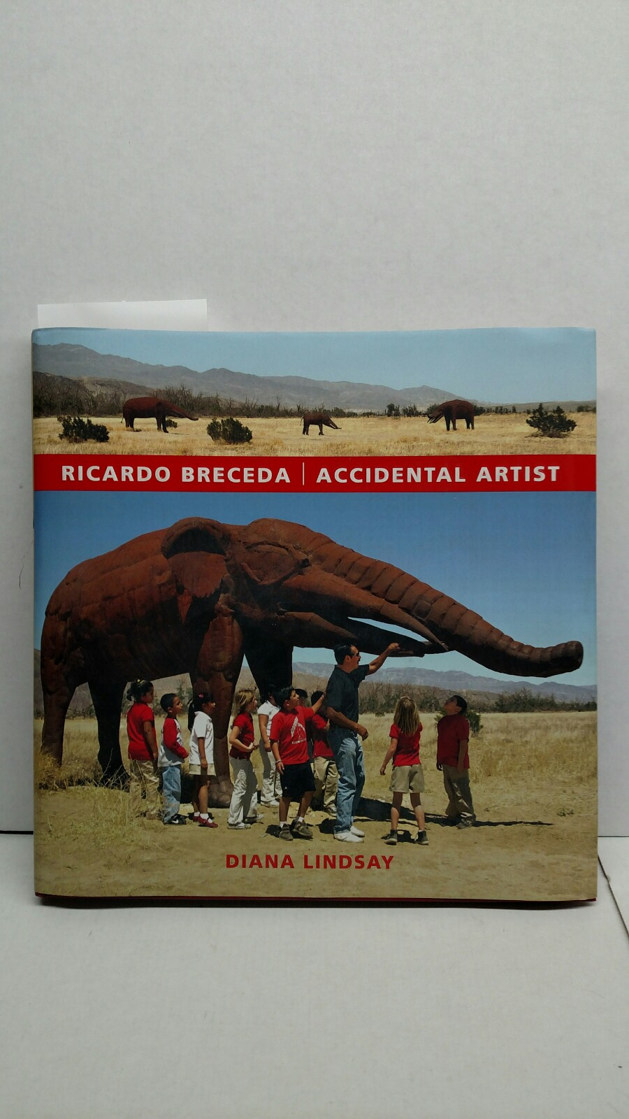 Image 0 of Ricardo Breceda: Accidental Artist