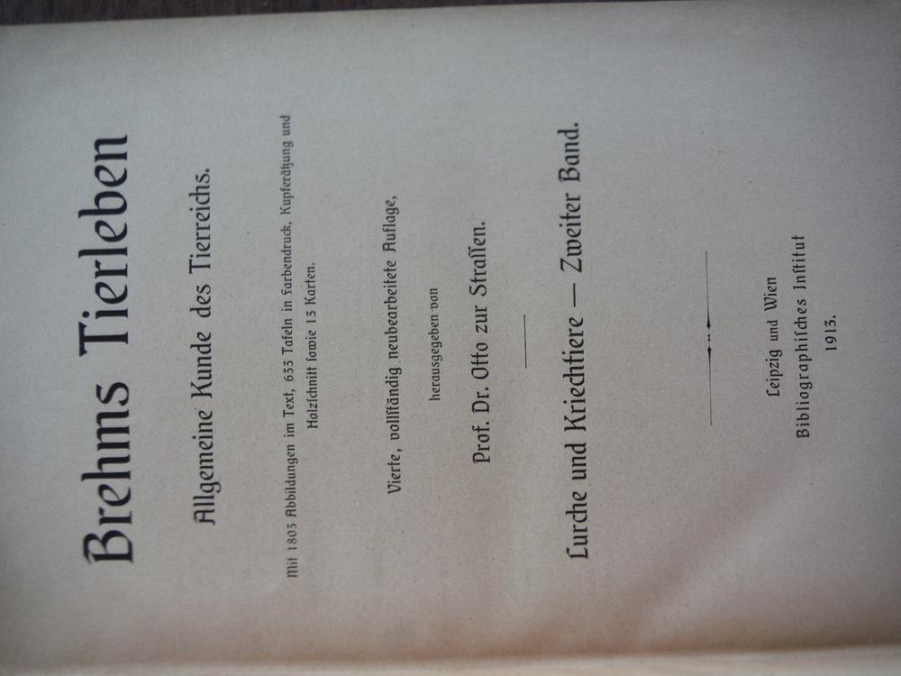 Image 1 of Die Lurche und Kriechtiere. Neubearbeitet von Franz Werner. Vol 1: Lurche und Kr