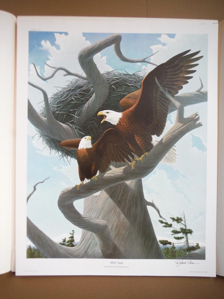 Image 1 of North American Birds