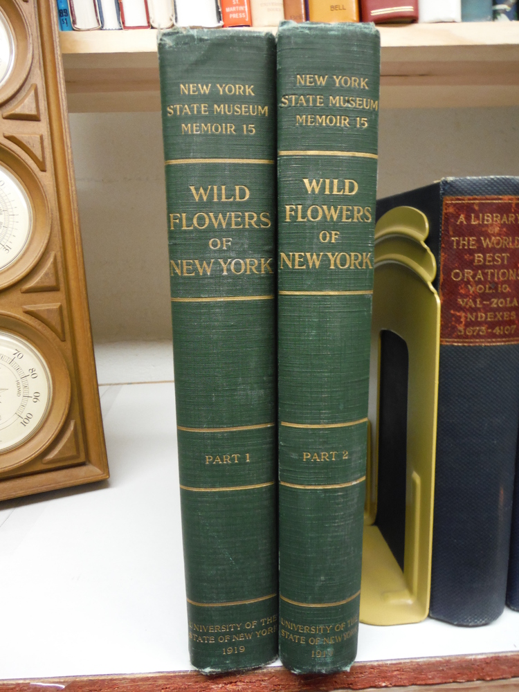 Image 0 of Wild Flowers of New York -- Two Volume Set, (Parts 1 and 2) -- University of the
