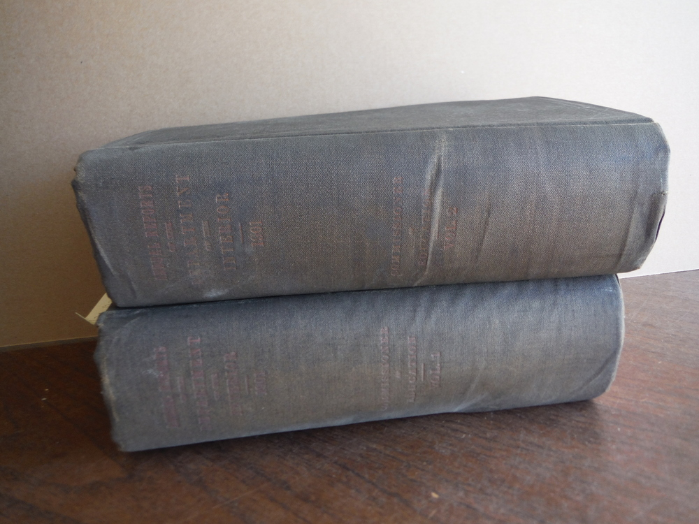 Report of the Commissioner of Education for ear 1900-1901 (2 Vols.)