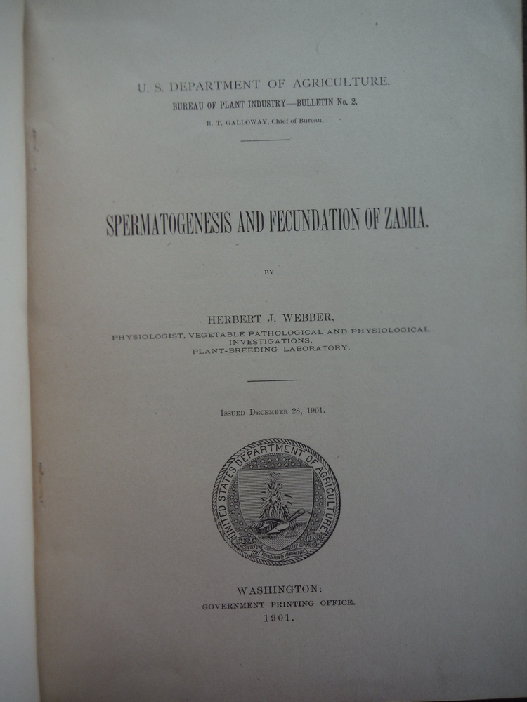 Image 1 of Spermatogenesis and Fecundation of Zamia