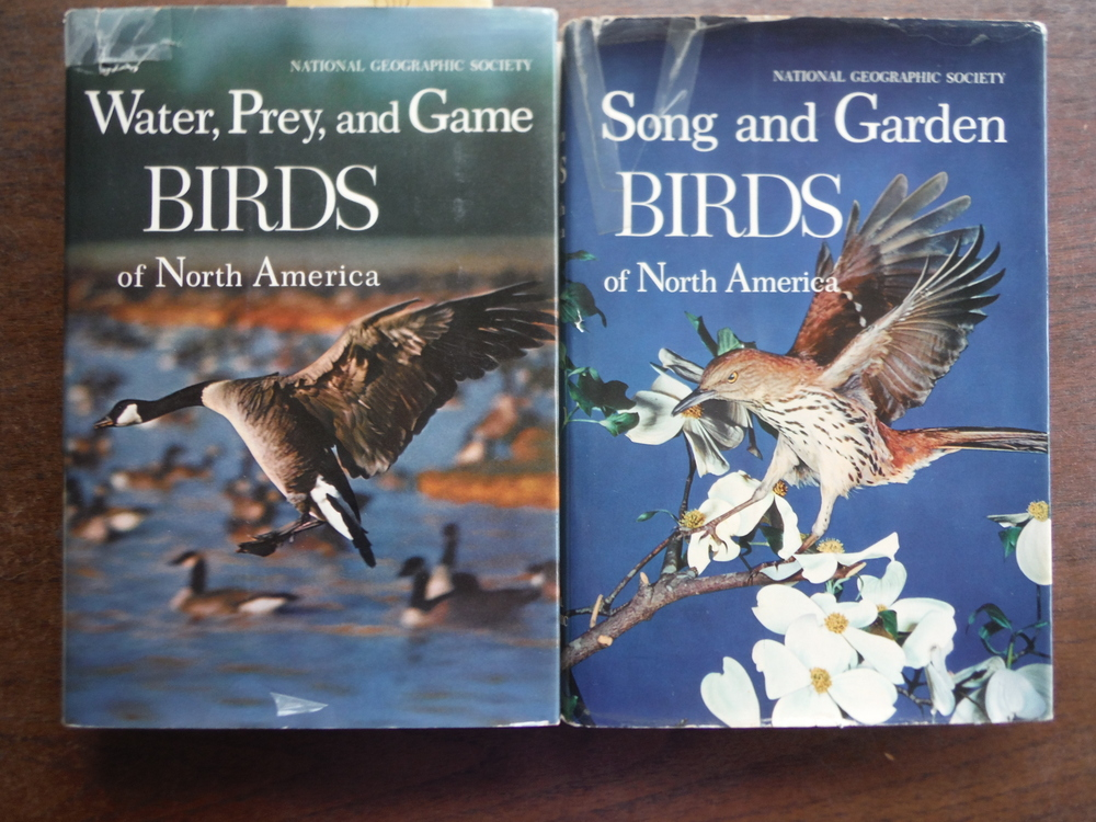 Image 1 of Song and Garden Birds of North America / Water Prey and Game Birds of North Amer