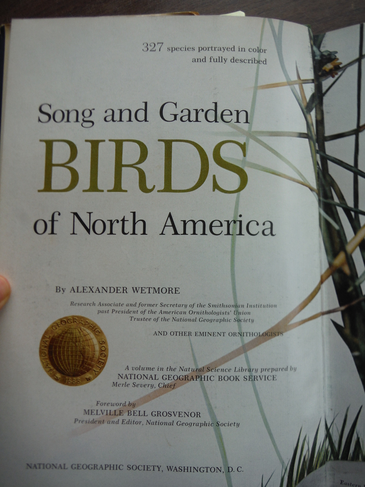 Image 3 of Song and Garden Birds of North America / Water Prey and Game Birds of North Amer