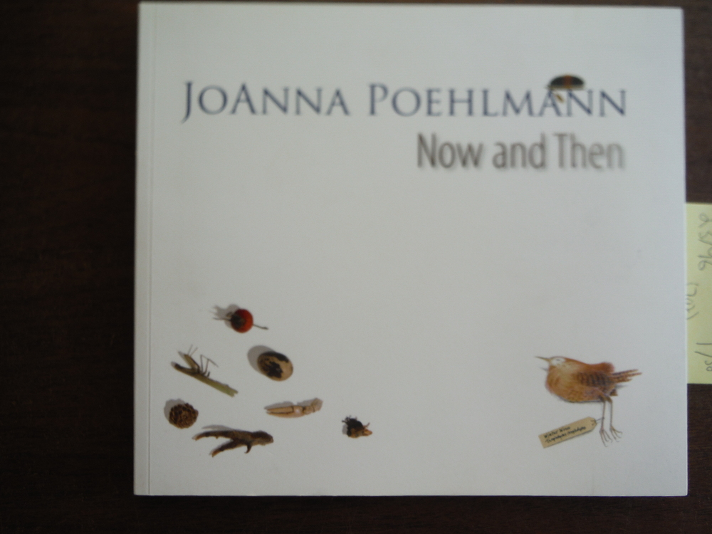 Image 0 of JoAnna Poehlmann: Now and Then