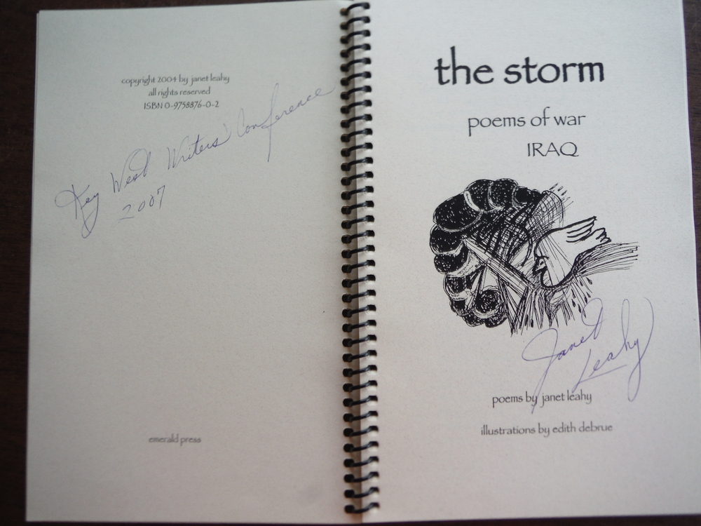Image 1 of The Storm: Poems of War: Iraq