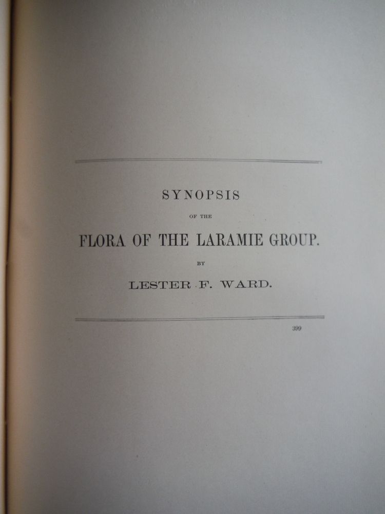 Image 0 of Synopsis of the Flora of the Laramie Group
