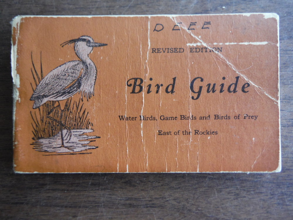 Image 1 of Bird Guide Water Birds, Game Birds, and Birds of Prey