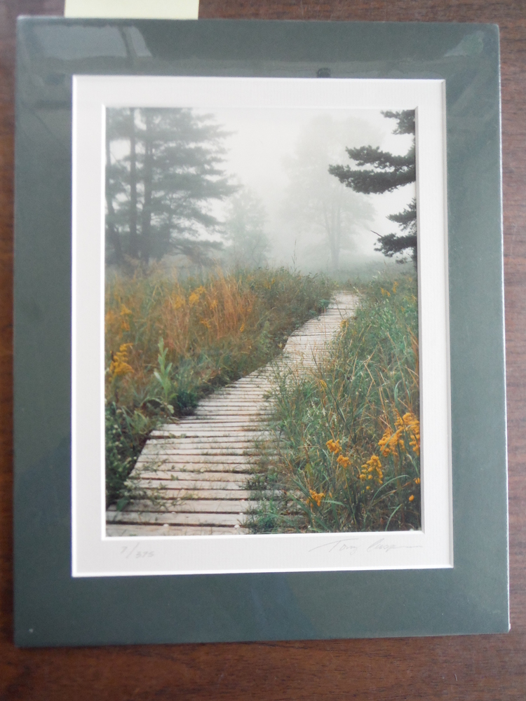 Misty Path (Signed Limited Edition Print)