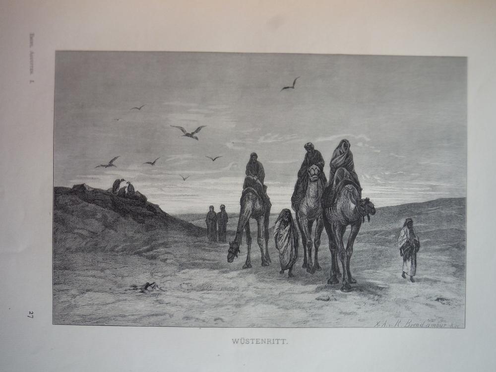 Image 0 of Wusternritt - Steel Engraving (1879)