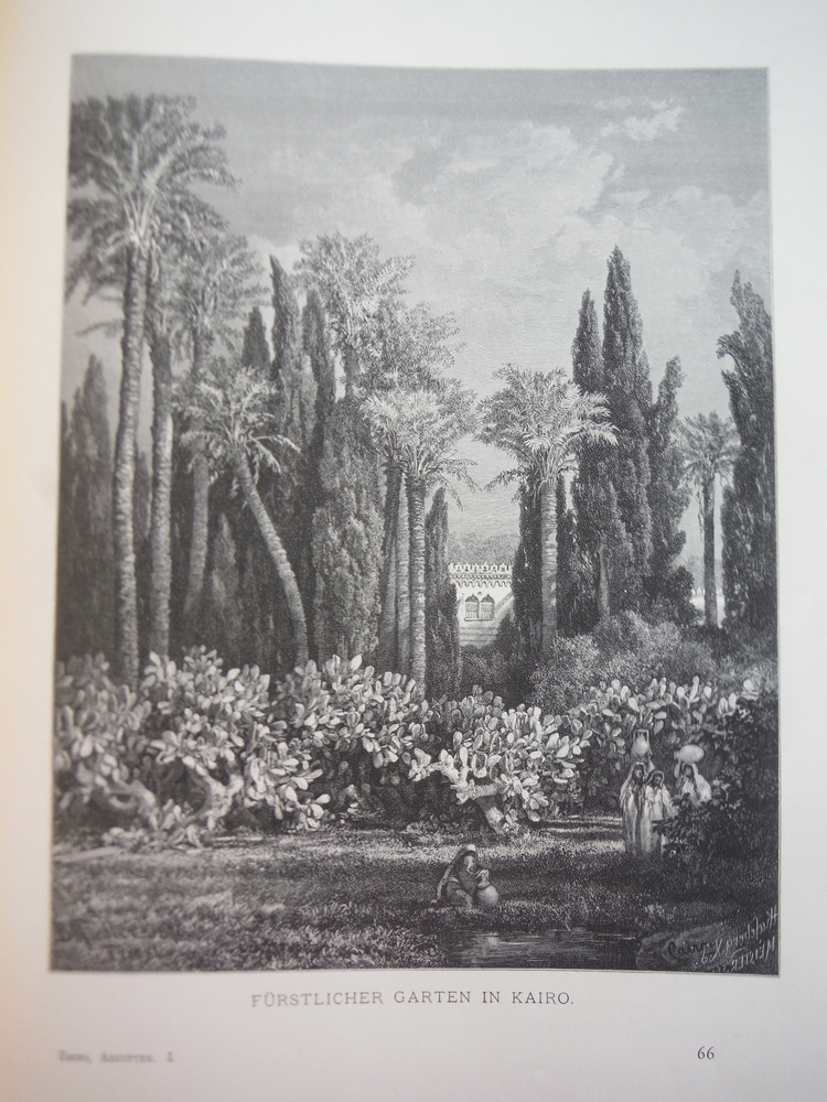 Image 0 of Furstlicher Garten in Kairo by Bernhard Fiedler - Steel Engraving (1879)