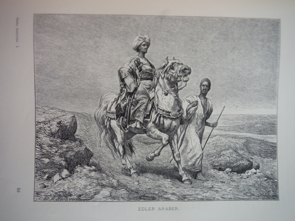 Image 0 of Edler Araber by C. Rudolf Huber - Steel engraving (1879)