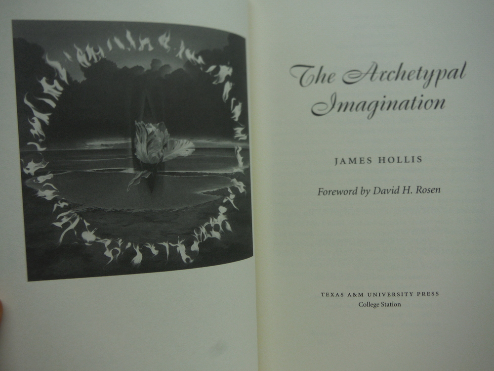 Image 1 of The Archetypal Imagination (CAROLYN AND ERNEST FAY SERIES IN ANALYTICAL PSYCHOLO