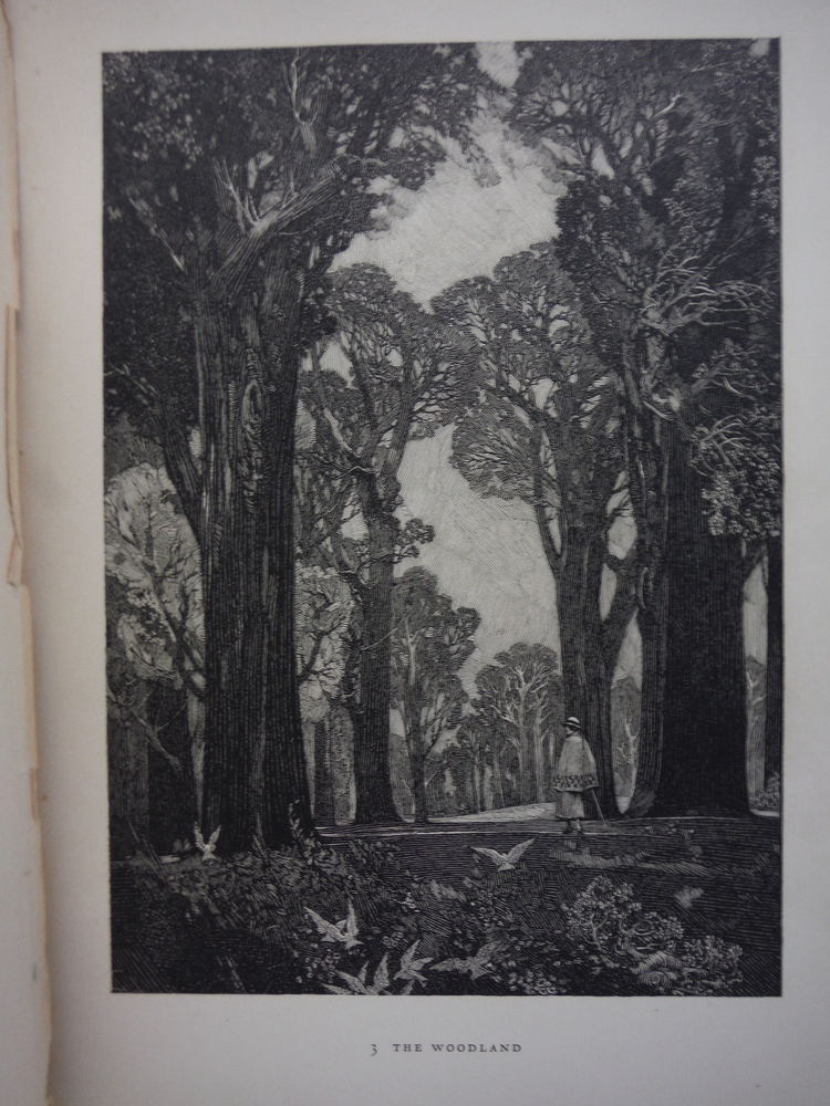 Image 1 of Franklin Booth: Sixty reproductions from original drawings