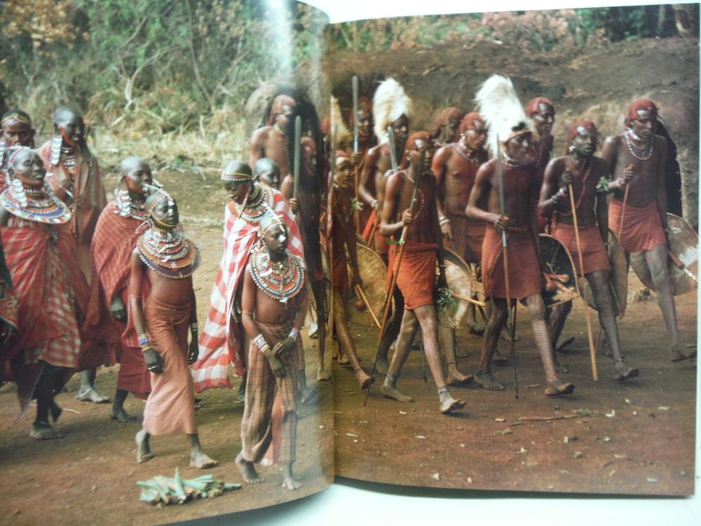 Image 1 of Maasai (Elmtree Africana)