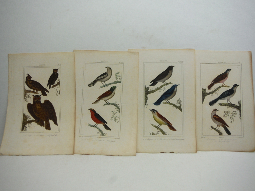 Image 4 of A. C. Vauthier hand colored avian engravings lot of 23 (1827)