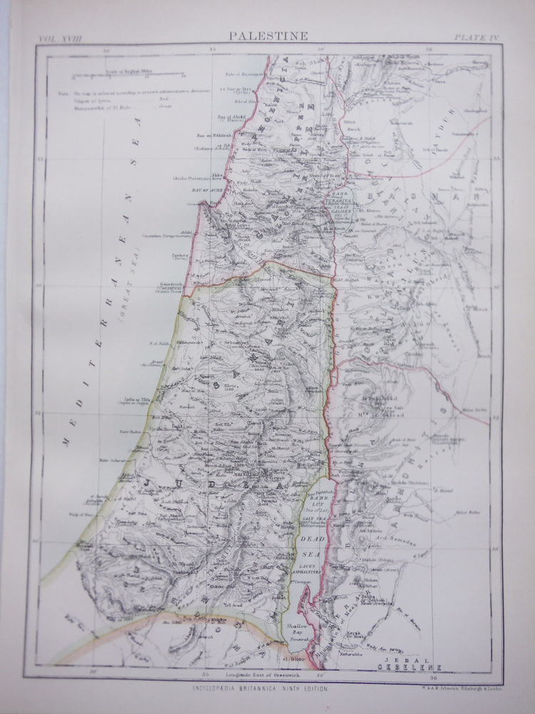 Antique Map of  Palestine from Encyclopaedia Britannica,  Ninth Edition Vol. XVI