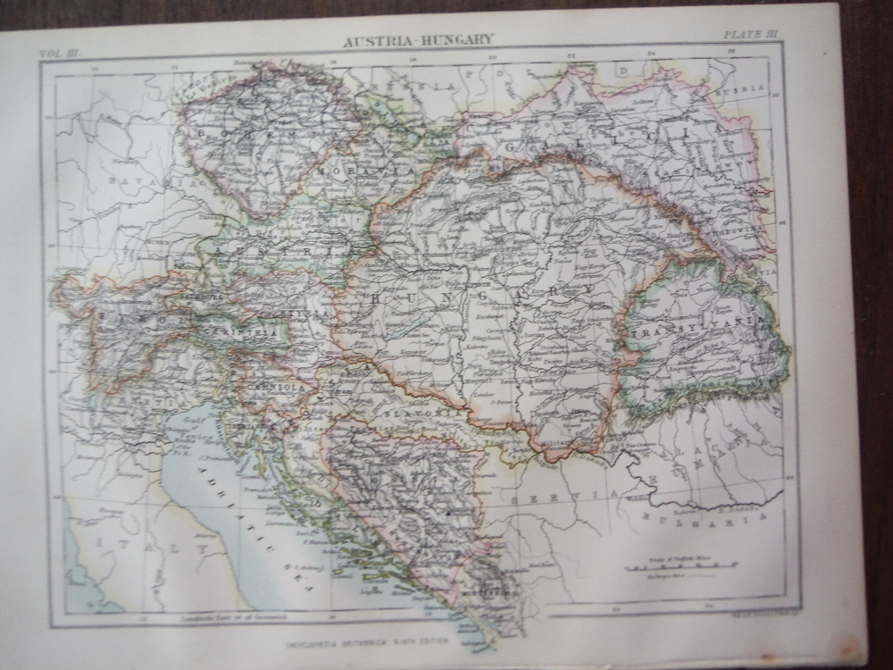 Antique Map of Austria Hungary from Encyclopaedia Britannica,  Ninth Edition Vol