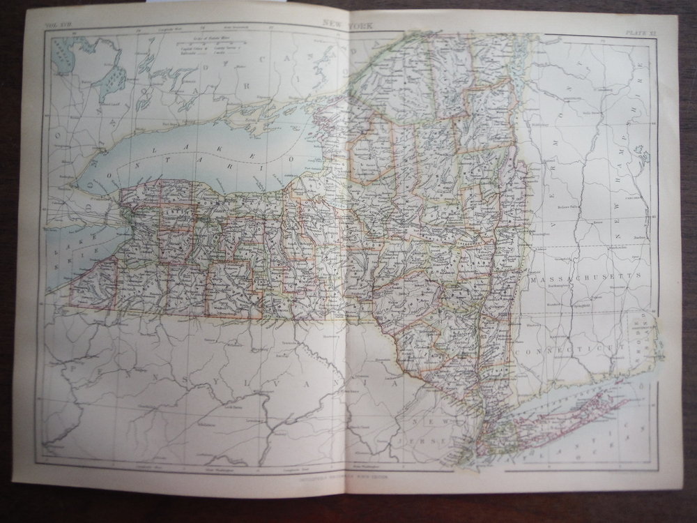 Antique Map of New York  from Encyclopaedia Britannica,  Ninth Edition Vol. XVII