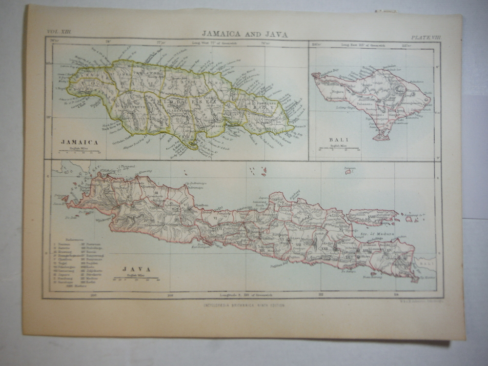 Antique Map of Jamaica and Java from Encyclopaedia Britannica,  Ninth Edition Vo