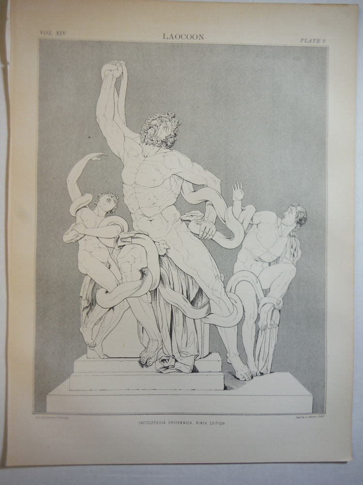 Antique Engraving of the Laocoon from Encyclopaedia Britannica,  Ninth Edition V