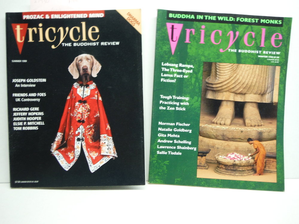 Image 1 of Tricycle The Buddhist Review - 12 Issues (1994-1999)