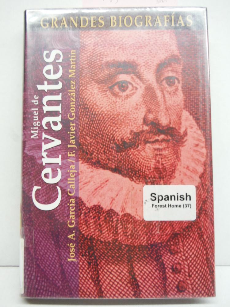 Miguel de Cervantes (Grandes biografias series)
