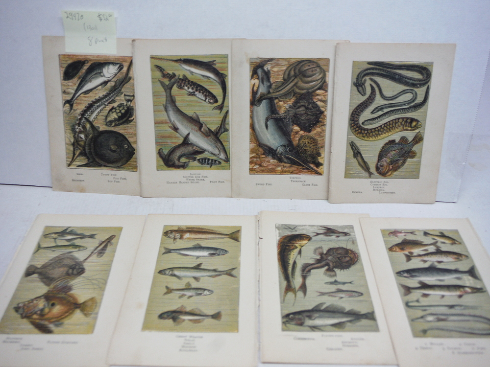 8 Baxter Kronheim Oil Colour  Fish Prints 1865