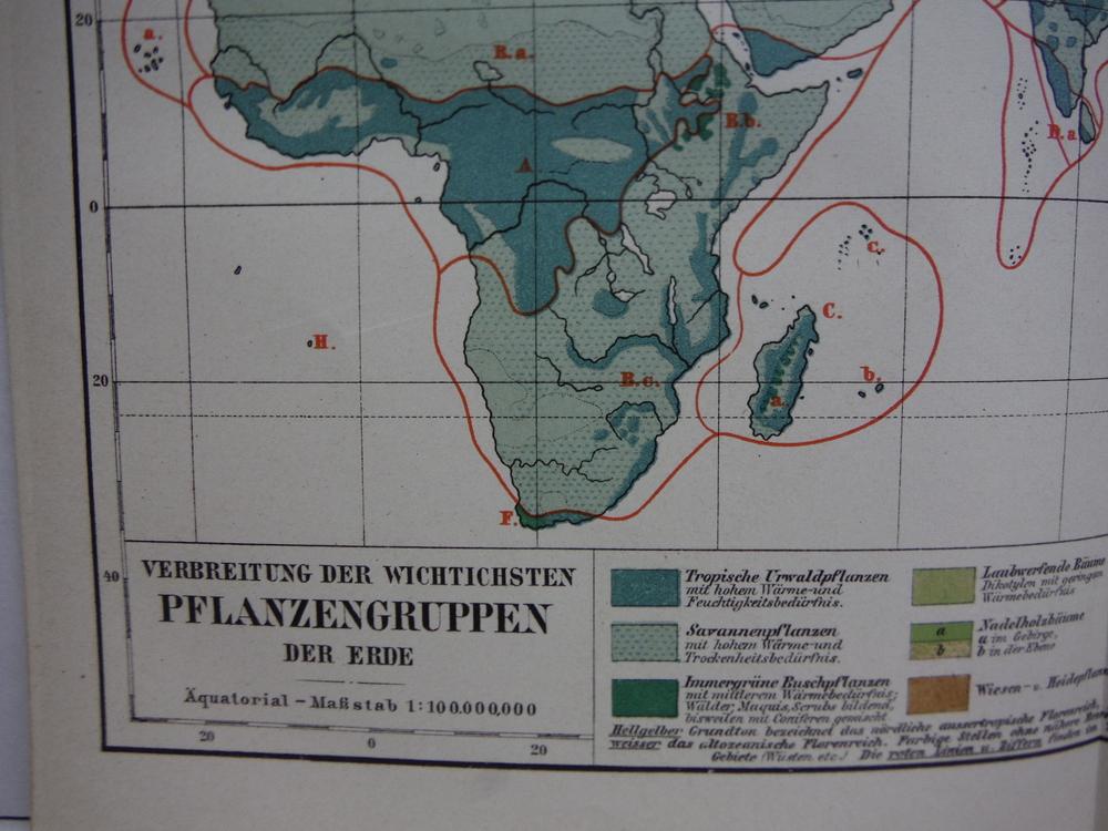 Image 1 of Meyers Antique Colored Map of  VERBREITUNG DER WICHTICHSTEN PFLANZENGRUPPEN DER