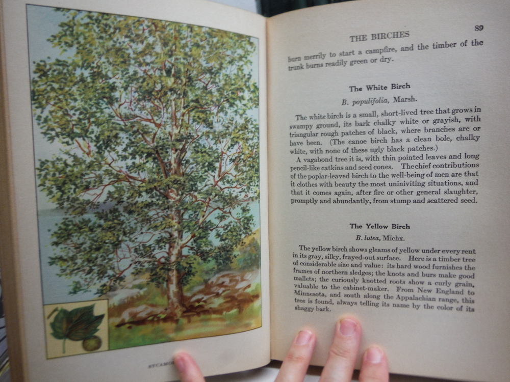 Image 4 of The Nature Library My Book House Edition (5 Vols)