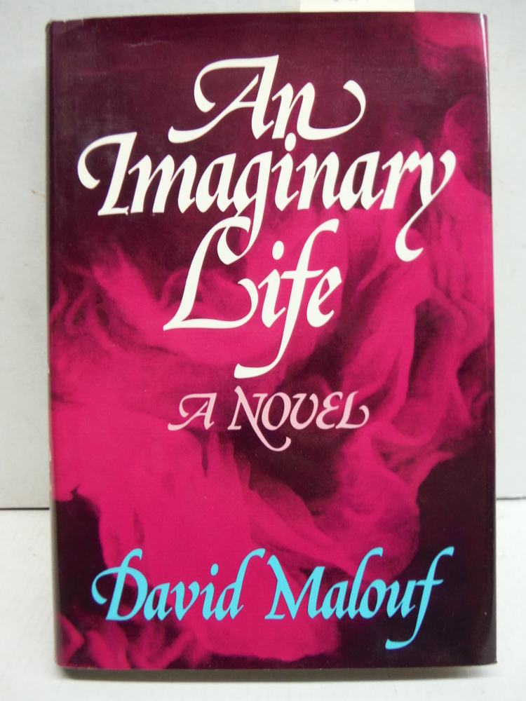 An Imaginary Life: A Novel