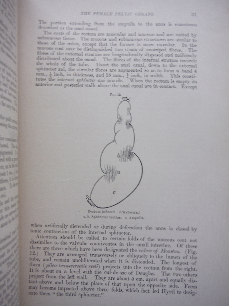 Image 2 of The Practice of Obstetrics By American Authors