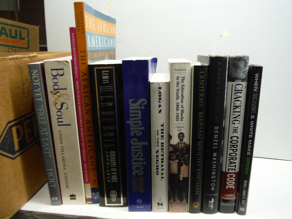 Twelve African-American History and Biography Books