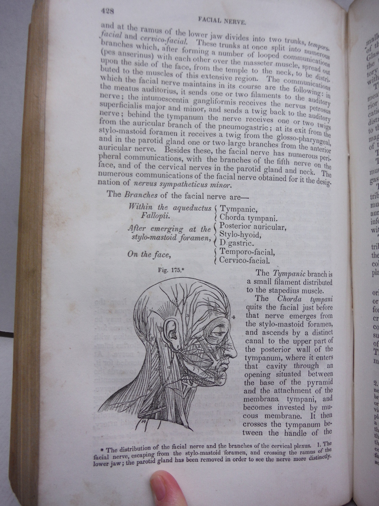 Image 2 of A System Of Human Anatomy General and Special