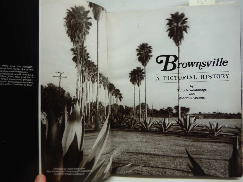 Image 1 of Brownsville, a pictorial history