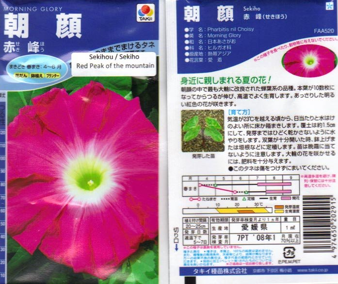 Image 1 of Japanese Morning Glory Seeds: Sekihou (Sekiho),Red Peak of Mountain, Ipomoea Nil