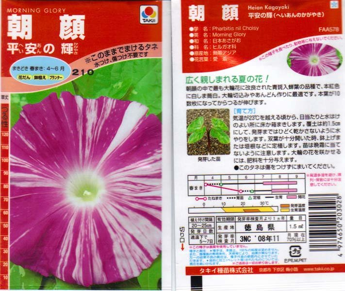 Image 1 of Heian No Kagayaki, Brilliance of the Heian Era,Japanese Morning Glory IpomoeaNil